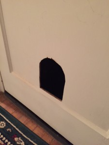 Hole_for_cats